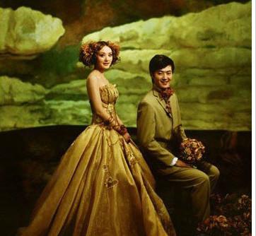手绘,婚纱照,油画,婚纱款式