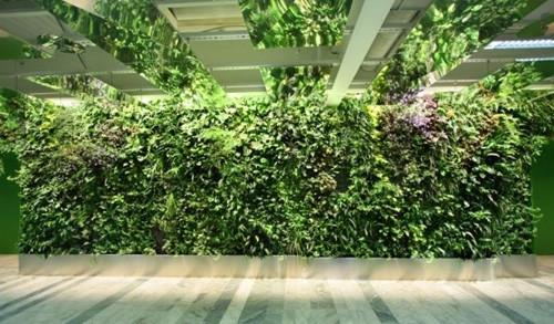 十款室内垂直花园超酷实景设计欣赏
