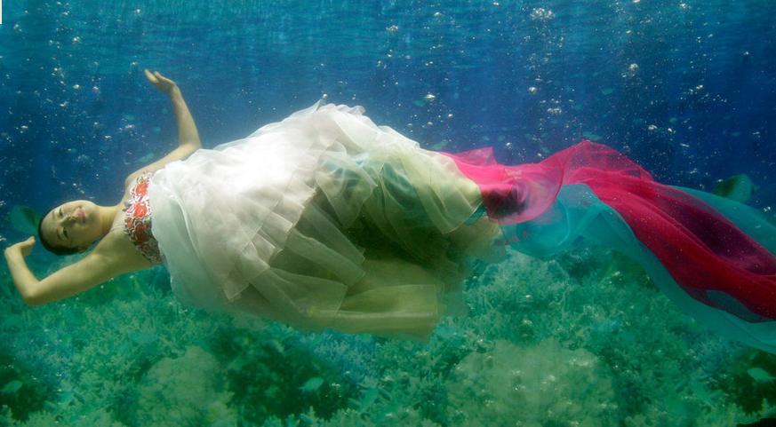 壁纸 动物 海底 海底世界 海洋馆 水族馆 鱼 鱼类 873_481