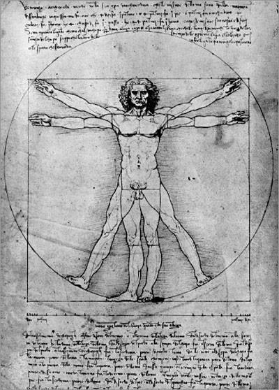 达芬奇身体结构素描作品