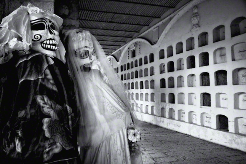 louis montrose获奖作品 摄影奖项 2011年...