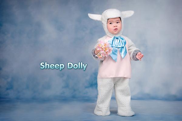 趣味童话故事:动物造型儿童摄影服装道具(9)