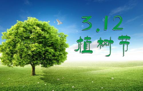 """爱在春天里:""""同心林""""植树节影楼活动策划方案"""
