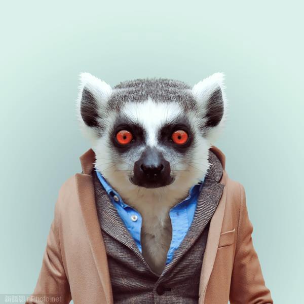 yago partal:穿上人类服装的动物肖像作品