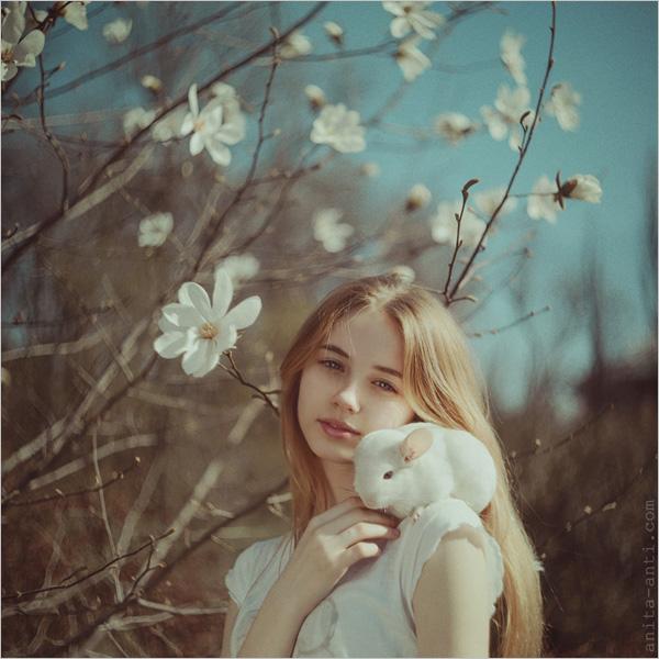 再加上兔子,狗狗等动物的出境,使得画面更加森林感,更加有爱.