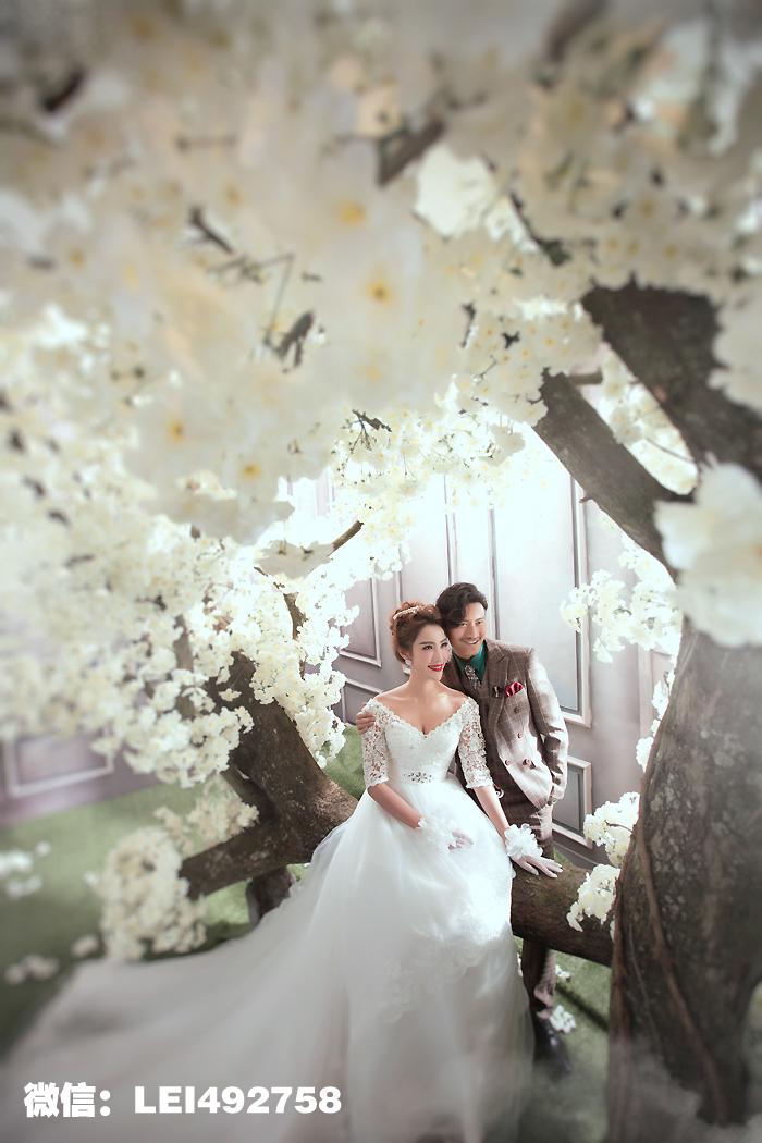 樱花树下婚纱摄影