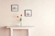 最新影楼资讯新闻-居家宅摄影:可以代替反光板的N?#20013;?#36947;具
