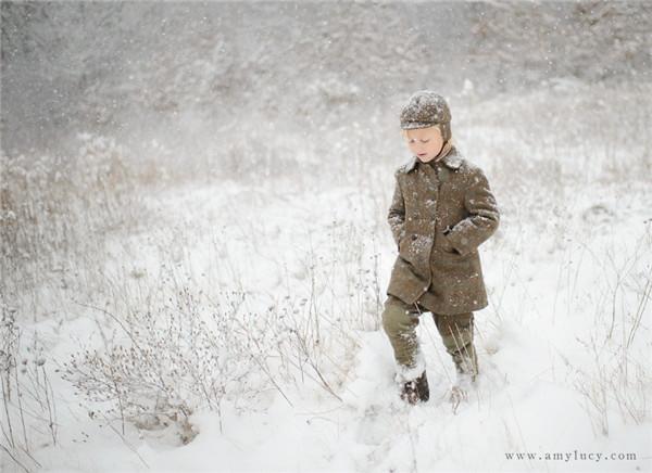冬天雪中动物图片