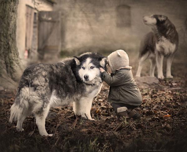 超梦幻 孩子与动物的温暖瞬间