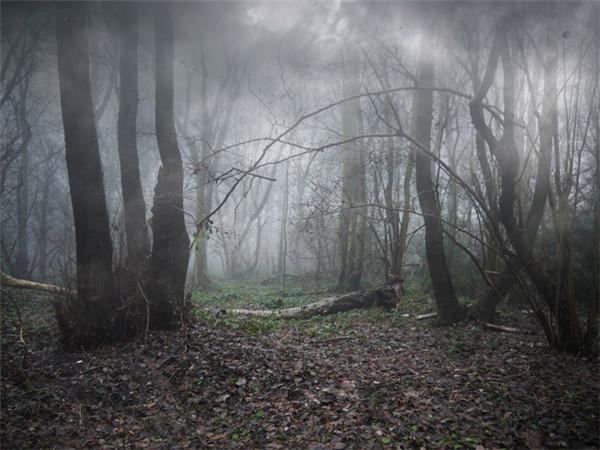 ps合成哥特风格的暗黑森林场景