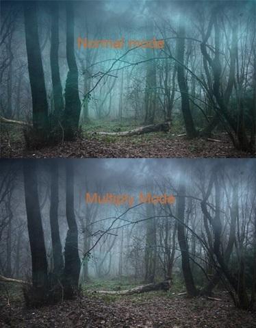 油画树林绘画步