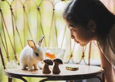 女摄影师精彩儿童摄影教程 为孩子留下最美瞬间