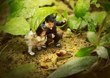 微观世界的创意儿童照是怎么拍的 把你送进小人国