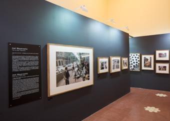 徕卡作为官方影像合作伙伴 携手影像上海艺术博览会