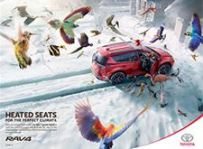 加拿大版丰田RAV4汽车平面广告设计