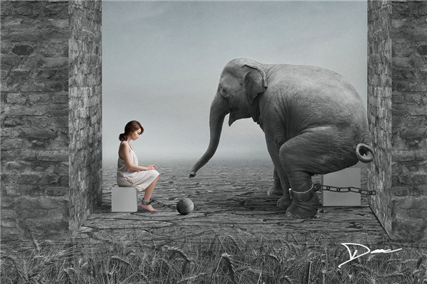 dave koh公益主题摄影作品 拒绝囚禁动物