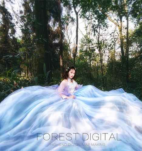 森系旅拍 婚纱照