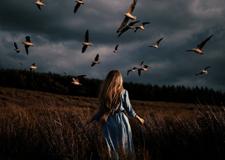 英国女摄影师rosiehardy的超现实主义摄影作品