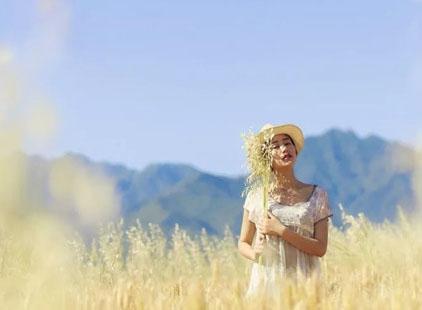 初秋来看看摄影师镜头里镀金的田野吧