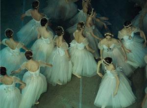 舞动的芭蕾舞者 身姿曼妙的少女们