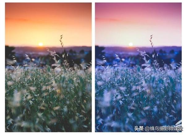 白平衡一步画龙点睛 巧用色温提升照片感官