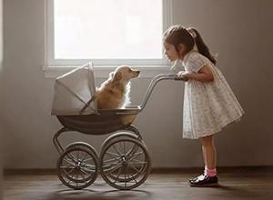 最新影楼资讯新闻-暖心瞬间:孩子与宠物的美好友谊