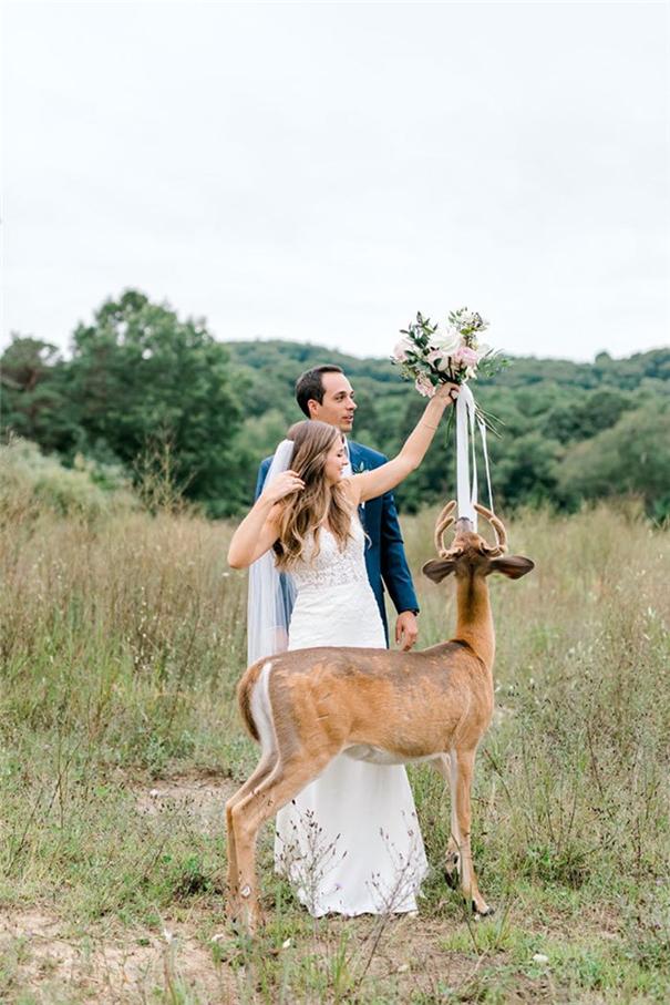来自森林使者的祝福 蹭婚纱照的小鹿