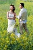 最新影樓資訊新聞-Photoshop打造柔和的金色花朵背景婚片