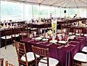 最新影楼资讯新闻-典雅色盘:利用10个细节打造精致紫色婚礼