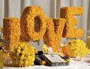 不同的LOVE相同的爱 浪漫婚礼中爱的展示