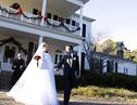 英国疯狂情侣环游全球举行29场婚礼 计划举行50场