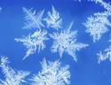 最新影楼资讯新闻-学习如何拍摄出晶莹剔透的冰花
