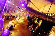 最新影楼资讯新闻-空间花艺装饰设计时尚秀场:艺术和商业的融合