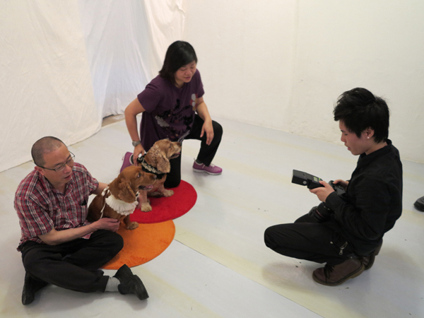 忆宠物摄影 香港宠物摄影师:工作辛苦也快乐