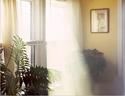 最新影楼资讯新闻-捕捉阳光的味道 丁达尔效应与摄影原理