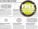 最新影楼资讯新闻-摄影教程:如何根据拍摄场景选择对焦模式