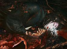 最新影楼资讯新闻-Reylia Slaby反传统色调的日式人像作品欣赏
