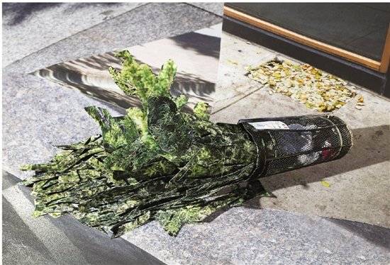 """杭州90后摄影师纽约开展 作品关注""""人与环境"""""""