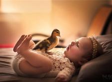 最新影楼资讯新闻-治愈系摄影 婴儿与宠物的紧密守护