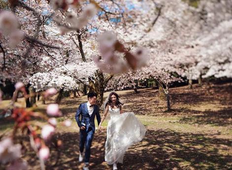 最新影楼资讯新闻-卜马婚纱旅拍:日本婚纱旅拍