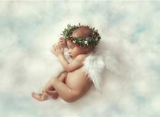 最新影楼资讯新闻-新生儿摄影,拼的是创意,萌化的是你的心
