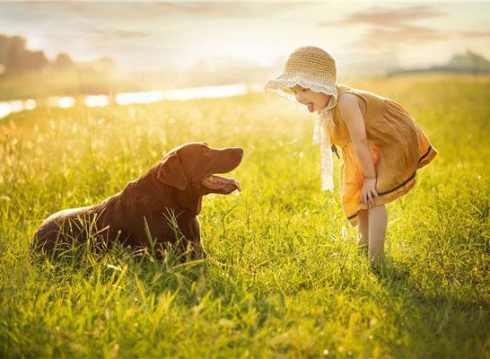 最新影楼资讯新闻-摄影师湘楠作品:孩子与狗狗的美好友谊