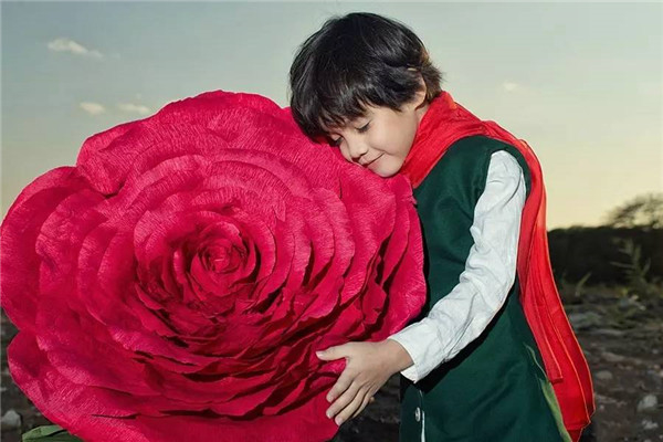 摄影教程:小王子和他的玫瑰花