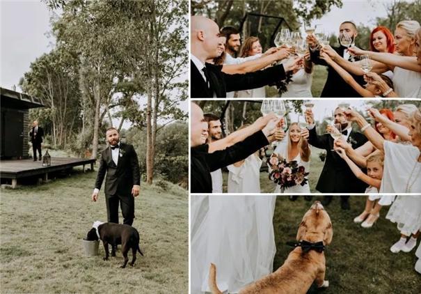 张张惊艳!国际年度婚礼摄影师大赛揭晓