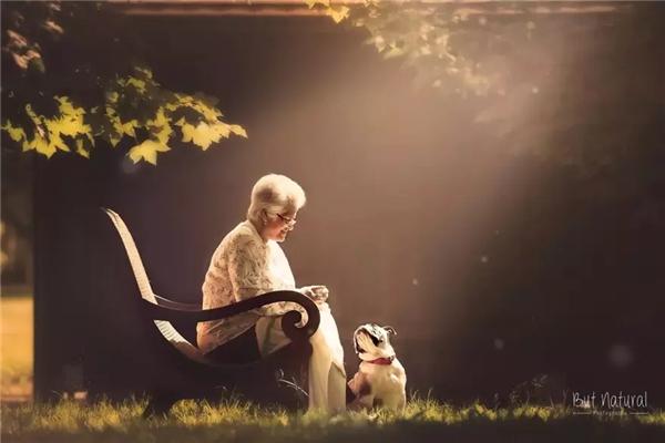温情的祖孙照  沐浴在阳光里