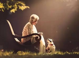 最新影楼资讯新闻-温情的祖孙照  沐浴在阳光里