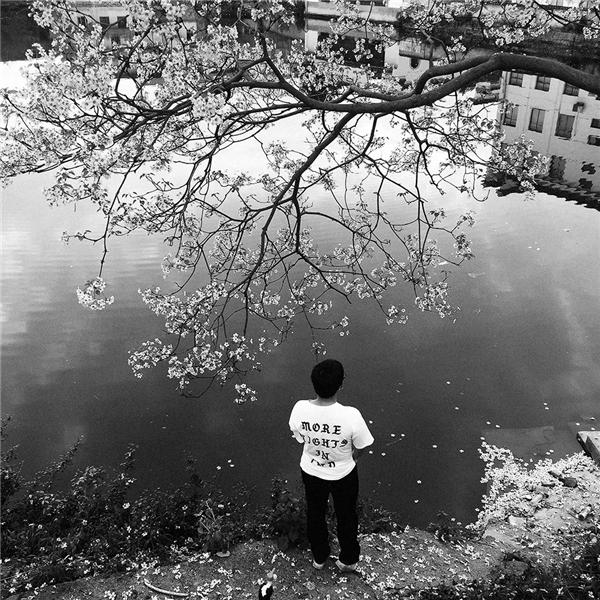 张驰:背影中的诗意与荒诞