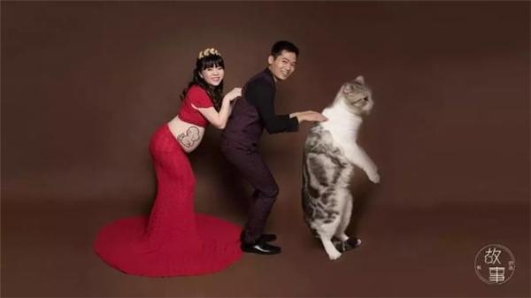 這家照相館,拍攝了上百組寵物和孕婦的相處瞬間