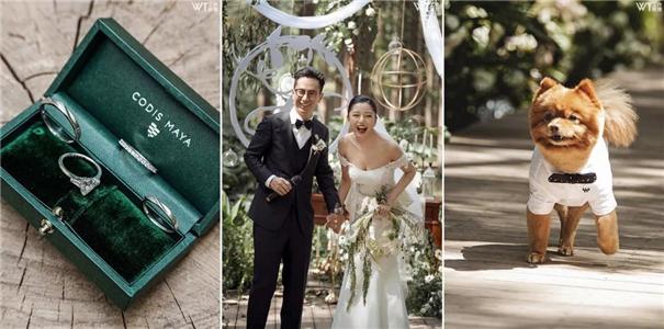 2019年的婚礼摄影市场,还适合单打独斗吗?