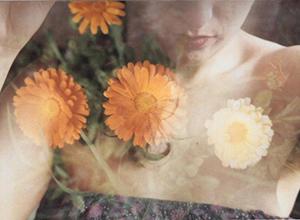 最新影楼乐虎娱乐平台新闻-Celeste Ortiz:柔软的身体,呼吸的光线